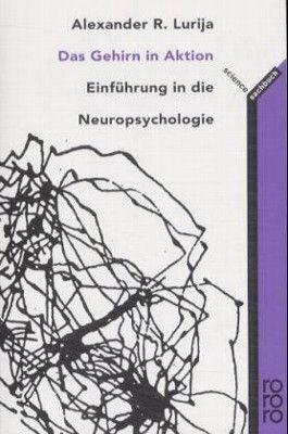 Das Gehirn in Aktion