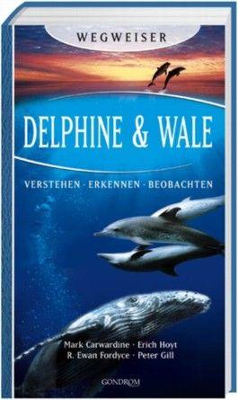 Delphine & Wale