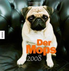 Der Mops 2008
