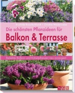 Die schönsten Pflanzideen für Balkon- & Kübelpflanzen