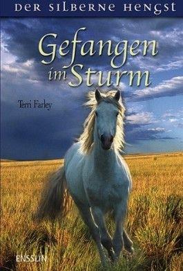 Gefangen im Sturm