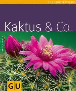 Kaktus & Co