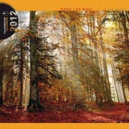 """Kalender 2012 """"Im Wald"""""""