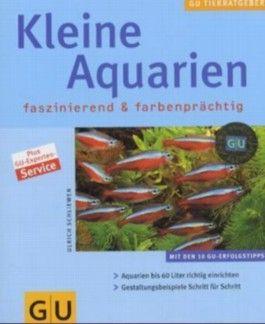 Kleine Aquarien faszinierend & farbenprächtig