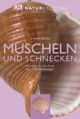 Muscheln und Schnecken