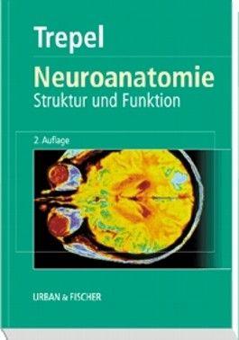 Neuroanatomie. Struktur und Funktion