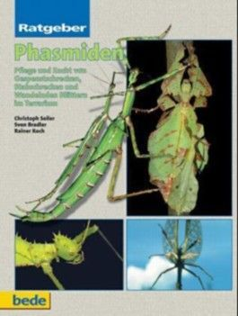 Ratgeber Phasmiden