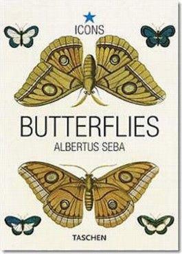 Seba, Butterflies