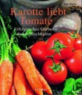 Tomate liebt Karotte