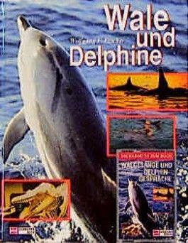Wale und Delphine, m. Cassette