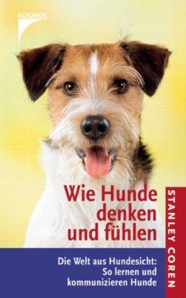 Wie Hunde denken und fühlen