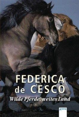 Wilde Pferde, weites Land