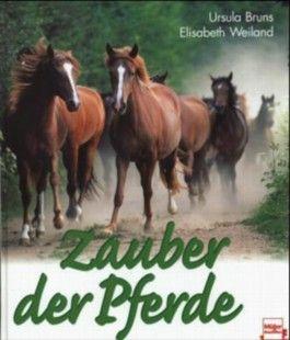 Zauber der Pferde